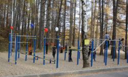 Новые спортивные площадки открыли в нижегородском регионе
