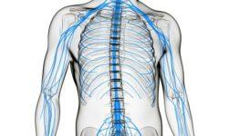 Для чего делают пункцию спинного мозга и больно ли это?
