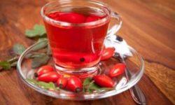 Украинский суперфуд – чай из шиповника: полезные свойства и рецепты